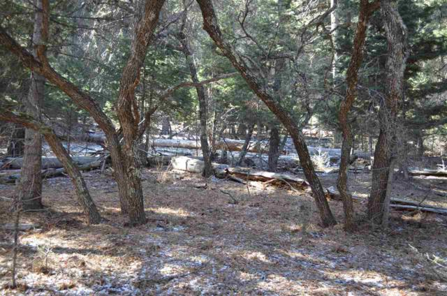 Cougar Rd, Cloudcroft, NM 88317 (MLS #160057) :: Assist-2-Sell Buyers and Sellers Preferred Realty