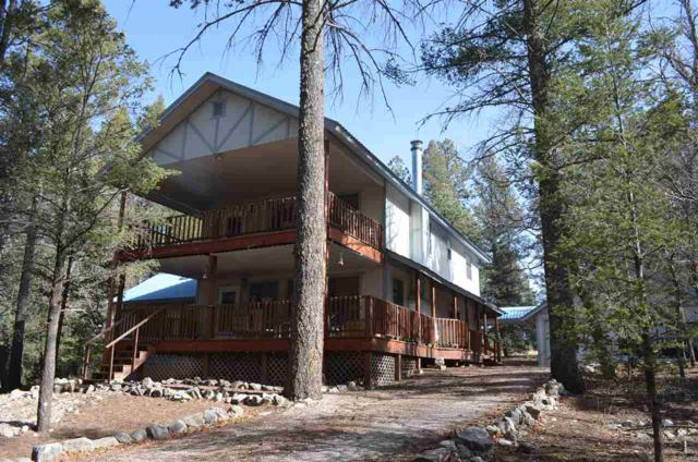 26 Timber Wolf #1, Mayhill, NM 88339 (MLS #160105) :: Assist-2-Sell Buyers and Sellers Preferred Realty
