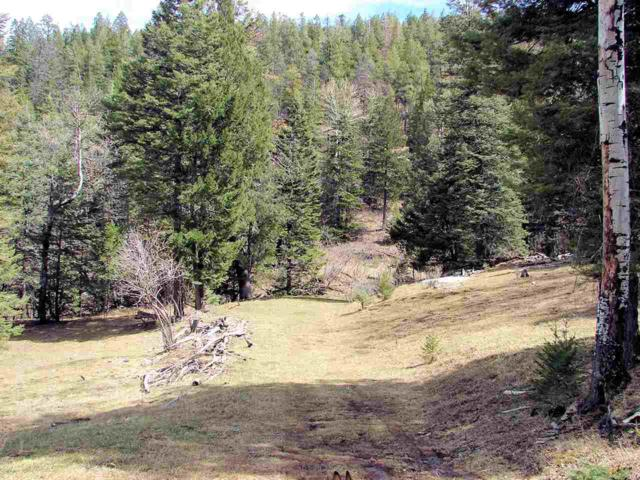 Clear Nite Rd, Cloudcroft, NM 88317 (MLS #160123) :: Assist-2-Sell Buyers and Sellers Preferred Realty