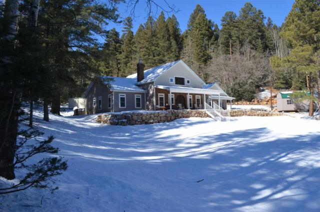 34 Billie Jean Way, Cloudcroft, NM 88317 (MLS #160124) :: Assist-2-Sell Buyers and Sellers Preferred Realty