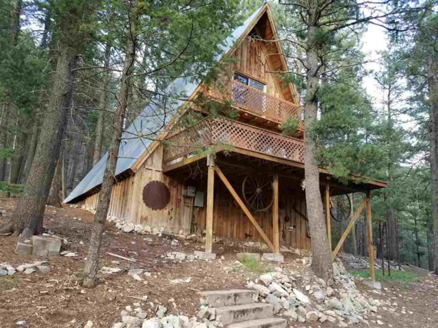 15 Canyon Rd, Cloudcroft, NM 88317 (MLS #160141) :: Assist-2-Sell Buyers and Sellers Preferred Realty