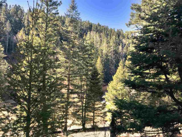 67 Mamaw St, Cloudcroft, NM 88317 (MLS #160143) :: Assist-2-Sell Buyers and Sellers Preferred Realty