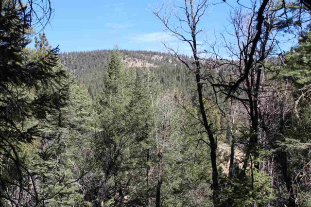Lot 18+ Ponderosa Pines Trl Pp2, Cloudcroft, NM 88317 (MLS #160160) :: Assist-2-Sell Buyers and Sellers Preferred Realty