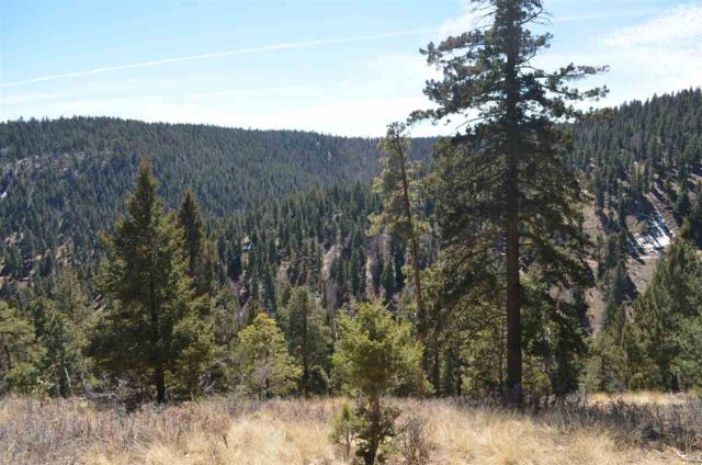 LT 22 Big Dipper Rd, Cloudcroft, NM 88317 (MLS #160197) :: Assist-2-Sell Buyers and Sellers Preferred Realty