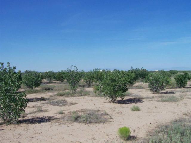 127 Santa Florence Rd, Alamogordo, NM 88310 (MLS #160216) :: Assist-2-Sell Buyers and Sellers Preferred Realty