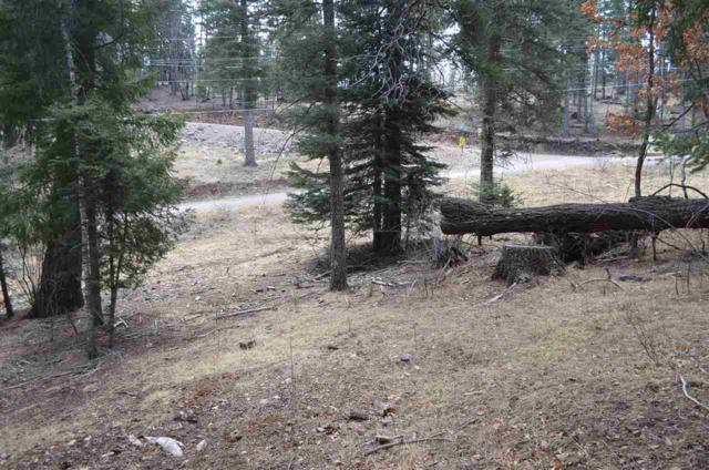 909 Woodlands Way #3, Cloudcroft, NM 88317 (MLS #160218) :: Assist-2-Sell Buyers and Sellers Preferred Realty