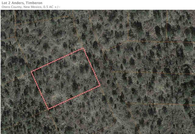 Lot 2 Anders Rd, Timberon, NM 88350 (MLS #160269) :: Assist-2-Sell Buyers and Sellers Preferred Realty