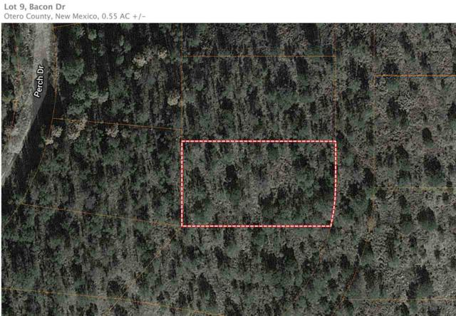 Lot 9 Anders Rd, Timberon, NM 88350 (MLS #160272) :: Assist-2-Sell Buyers and Sellers Preferred Realty