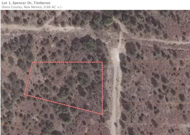 Lot 1 Spencer Dr, Timberon, NM 88350 (MLS #160273) :: Assist-2-Sell Buyers and Sellers Preferred Realty