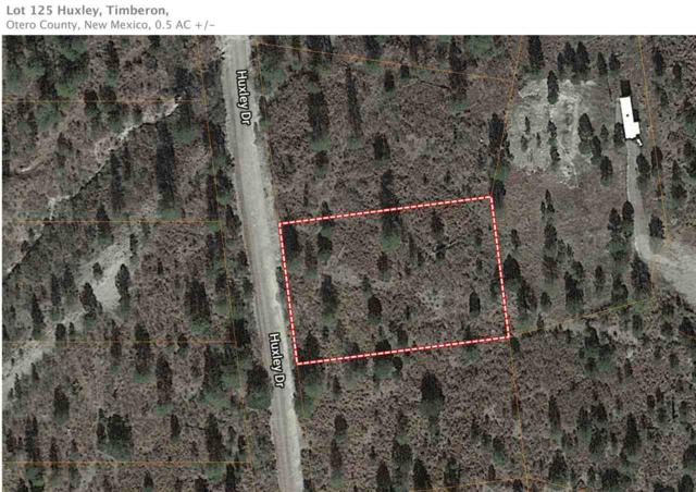 Lot 20 Huxley Dr, Weed, NM 88354 (MLS #160274) :: Assist-2-Sell Buyers and Sellers Preferred Realty