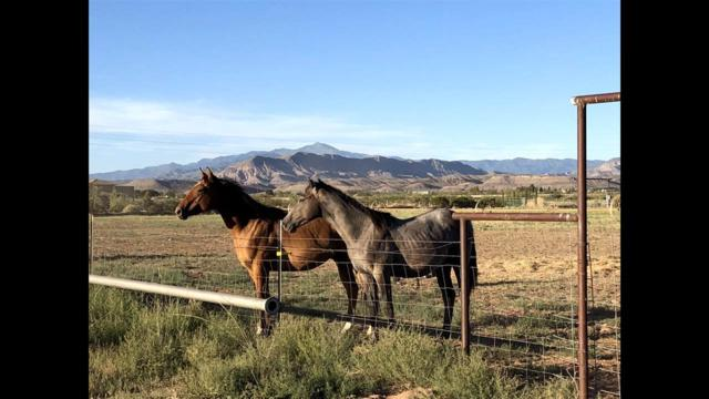 10 Derbyshire Rd, Tularosa, NM 88352 (MLS #160281) :: Assist-2-Sell Buyers and Sellers Preferred Realty