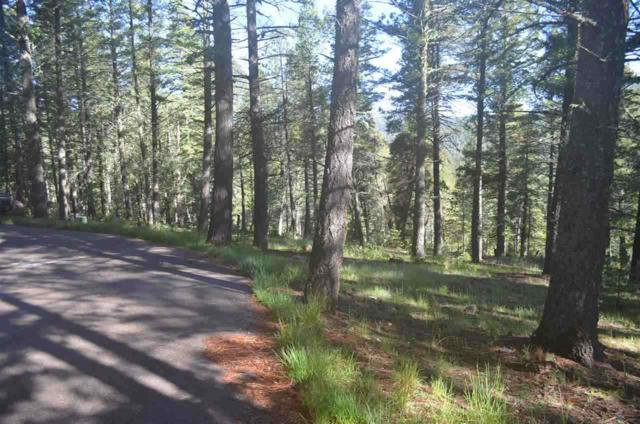 15 Sugar Maple #2, Cloudcroft, NM 88339 (MLS #160322) :: Assist-2-Sell Buyers and Sellers Preferred Realty