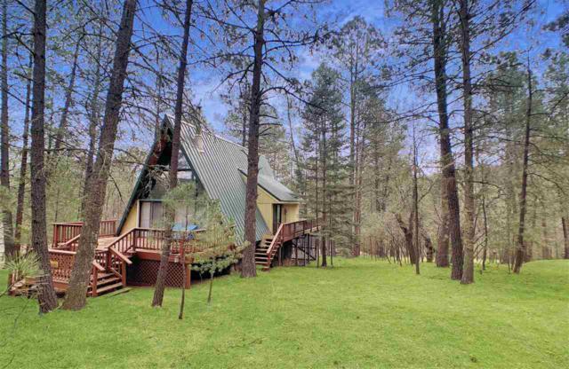 5 Mule Deer #1, Mayhill, NM 88339 (MLS #160333) :: Assist-2-Sell Buyers and Sellers Preferred Realty