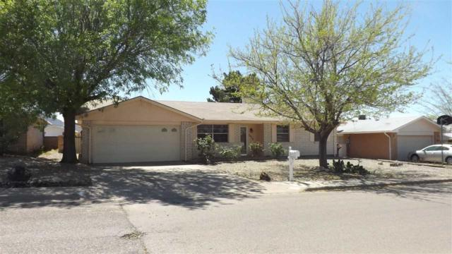 3014 Shawnee Trl, Alamogordo, NM 88310 (MLS #160415) :: Assist-2-Sell Buyers and Sellers Preferred Realty