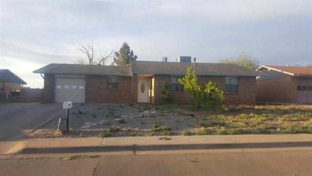 1505 White Oaks Ct, Alamogordo, NM 88310 (MLS #160440) :: Assist-2-Sell Buyers and Sellers Preferred Realty