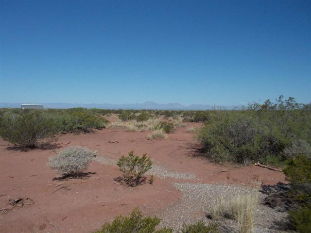 Lot 9 Oryx Dr, Tularosa, NM 88352 (MLS #160441) :: Assist-2-Sell Buyers and Sellers Preferred Realty