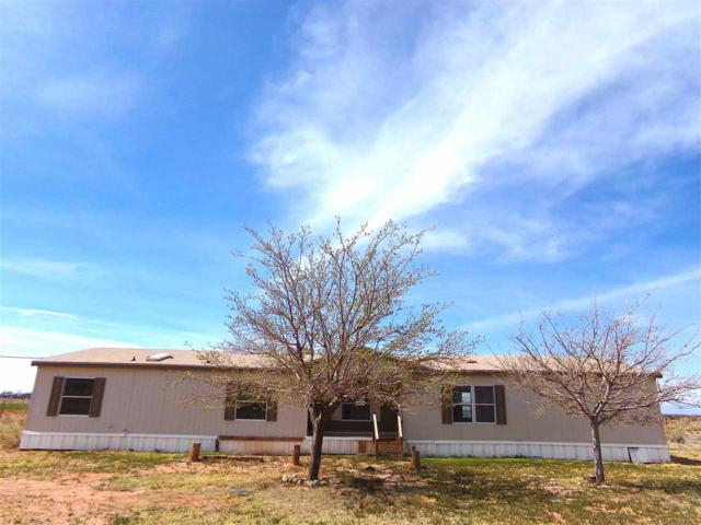166 Derbyshire Rd, Tularosa, NM 88352 (MLS #160454) :: Assist-2-Sell Buyers and Sellers Preferred Realty