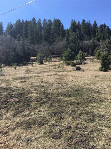 Lot 4 Cox Canyon Hwy, Cloudcroft, NM 88317 (MLS #160492) :: Assist-2-Sell Buyers and Sellers Preferred Realty