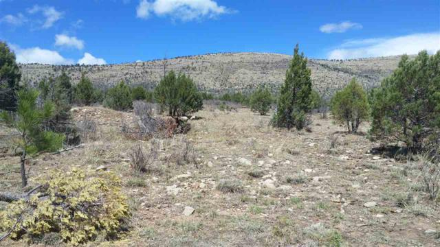 16 Springs Canyon Rd, Cloudcroft, NM 88317 (MLS #160502) :: Assist-2-Sell Buyers and Sellers Preferred Realty