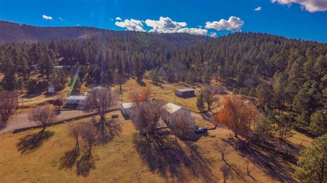 19 Senior Circle W Dr, Mayhill, NM 88339 (MLS #160517) :: Assist-2-Sell Buyers and Sellers Preferred Realty