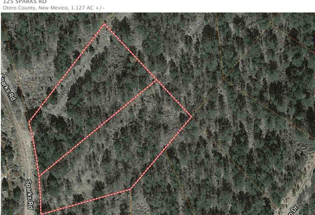 125 Sparks Rd, Timberon, NM 88350 (MLS #160545) :: Assist-2-Sell Buyers and Sellers Preferred Realty