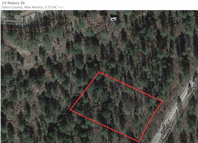 24 Malory Dr, Timberon, NM 88350 (MLS #160549) :: Assist-2-Sell Buyers and Sellers Preferred Realty