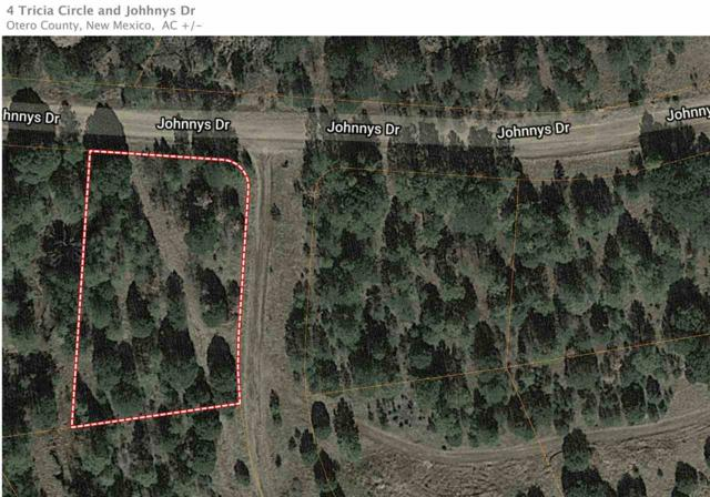 4 Trisha Cir, Timberon, NM 88350 (MLS #160551) :: Assist-2-Sell Buyers and Sellers Preferred Realty