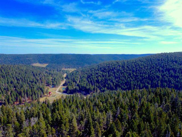 75 Lee Cir, Cloudcroft, NM 88317 (MLS #160576) :: Assist-2-Sell Buyers and Sellers Preferred Realty