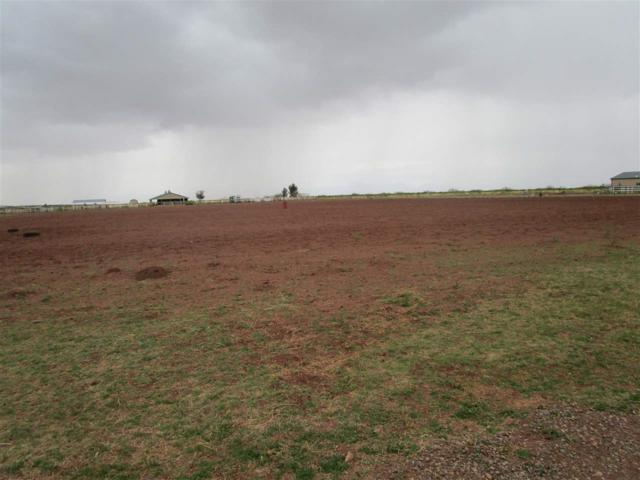 15 & 16 Jim Day Ln, Tularosa, NM 88352 (MLS #160577) :: Assist-2-Sell Buyers and Sellers Preferred Realty
