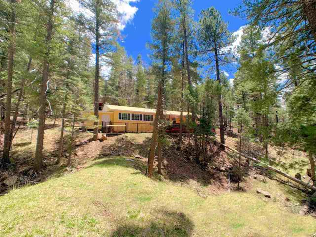 15 Cloudview Dr, Cloudcroft, NM 88317 (MLS #160586) :: Assist-2-Sell Buyers and Sellers Preferred Realty