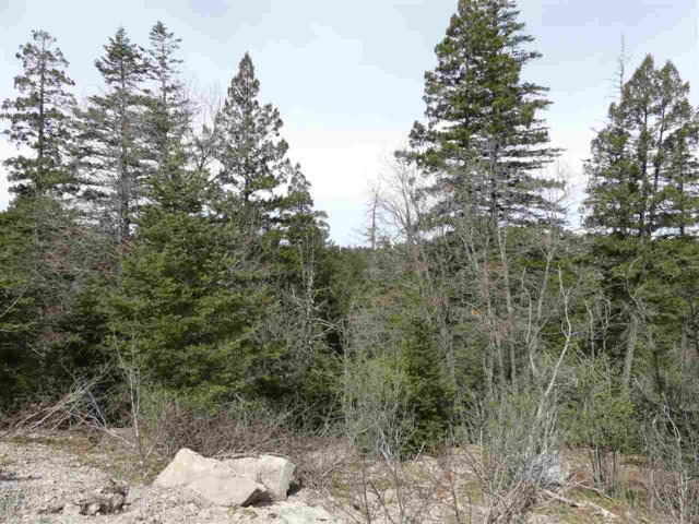 Woodlands Way 1-B, Cloudcroft, NM 88317 (MLS #160622) :: Assist-2-Sell Buyers and Sellers Preferred Realty