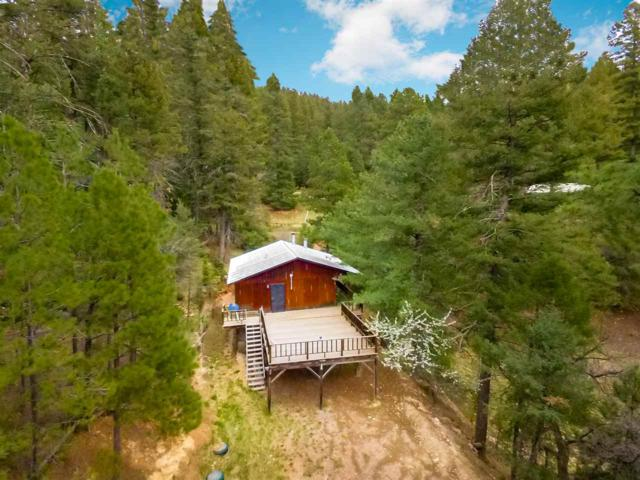 26 Heather Way, Cloudcroft, NM 88317 (MLS #160623) :: Assist-2-Sell Buyers and Sellers Preferred Realty