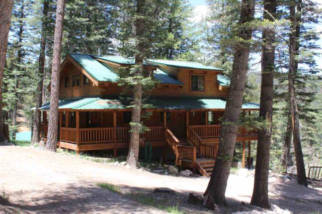 40 Spring Water #1, Cloudcroft, NM 88317 (MLS #160687) :: Assist-2-Sell Buyers and Sellers Preferred Realty