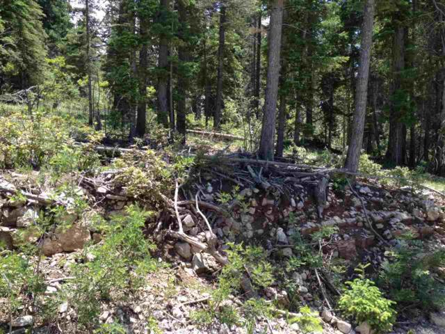 Address Not Published, Cloudcroft, NM 88317 (MLS #160716) :: Assist-2-Sell Buyers and Sellers Preferred Realty
