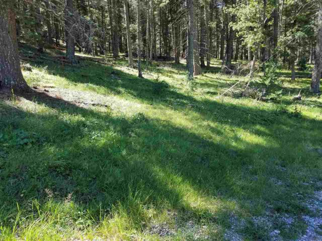 Spring Water, Cloudcroft, NM 88317 (MLS #160723) :: Assist-2-Sell Buyers and Sellers Preferred Realty