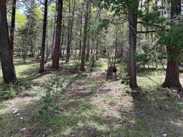 Columbine Blvd, Cloudcroft, NM 88317 (MLS #160735) :: Assist-2-Sell Buyers and Sellers Preferred Realty
