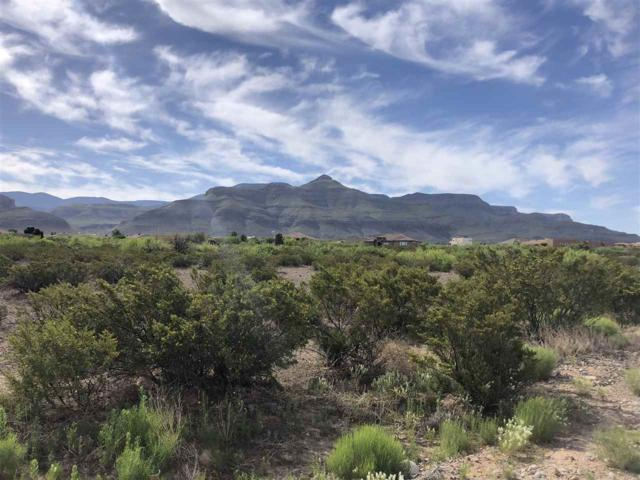 1300 Ocotillo Dr, Alamogordo, NM 88310 (MLS #160737) :: Assist-2-Sell Buyers and Sellers Preferred Realty