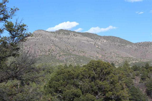 Lot 20+21 Chaucer Dr, Timberon, NM 88350 (MLS #160739) :: Assist-2-Sell Buyers and Sellers Preferred Realty