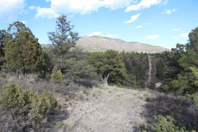 Lot 20 Chaucer Dr, Timberon, NM 88350 (MLS #160740) :: Assist-2-Sell Buyers and Sellers Preferred Realty