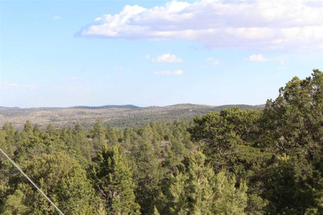 Lot 21 Chaucer Dr, Timberon, NM 88350 (MLS #160741) :: Assist-2-Sell Buyers and Sellers Preferred Realty