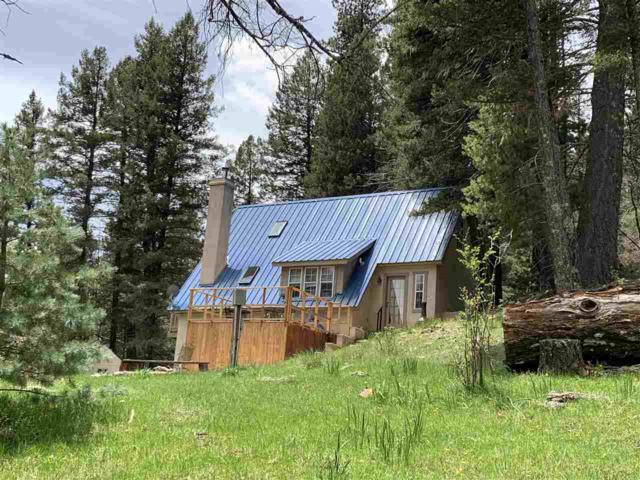 2013 James Canyon Hwy, Cloudcroft, NM 88317 (MLS #160743) :: Assist-2-Sell Buyers and Sellers Preferred Realty