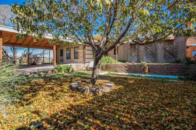 1424 Apple Ave, Tularosa, NM 88352 (MLS #160767) :: Assist-2-Sell Buyers and Sellers Preferred Realty