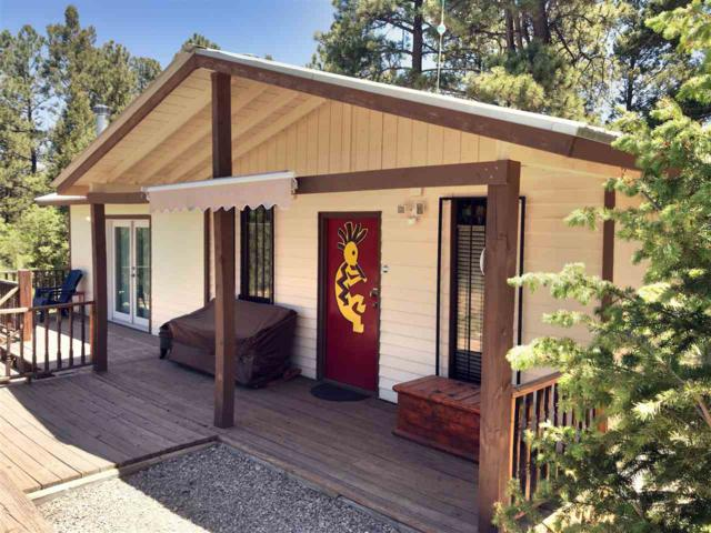 41 James Canyon Hwy, Cloudcroft, NM 88317 (MLS #160774) :: Assist-2-Sell Buyers and Sellers Preferred Realty