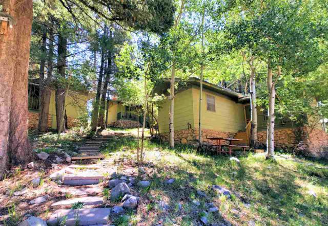 400 Columbine Blvd, Cloudcroft, NM 88317 (MLS #160780) :: Assist-2-Sell Buyers and Sellers Preferred Realty