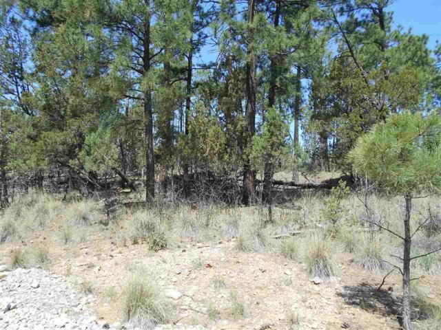 Bagdad Dr #9, Timberon, NM 88350 (MLS #160781) :: Assist-2-Sell Buyers and Sellers Preferred Realty