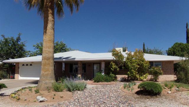 602 Zia Av, Alamogordo, NM 88310 (MLS #160786) :: Assist-2-Sell Buyers and Sellers Preferred Realty
