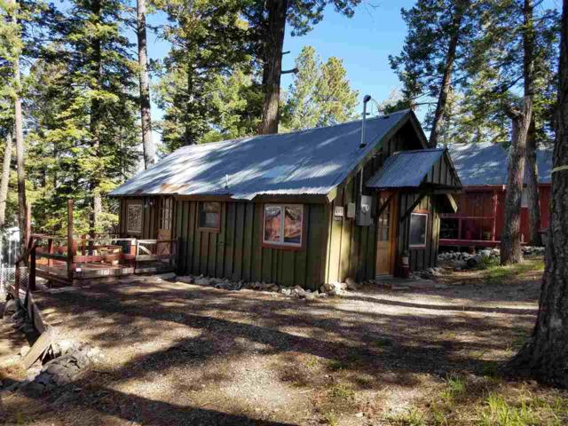 405 Phelps Circle, Cloudcroft, NM 88317 (MLS #160787) :: Assist-2-Sell Buyers and Sellers Preferred Realty
