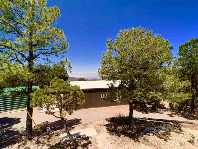 57 Wild Jasmine Rd, High Rolls Mountain Park, NM 88325 (MLS #160818) :: Assist-2-Sell Buyers and Sellers Preferred Realty