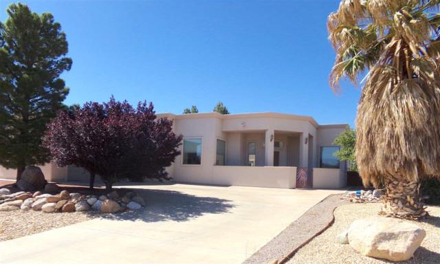2308 Saguaro Lp, Alamogordo, NM 88310 (MLS #160828) :: Assist-2-Sell Buyers and Sellers Preferred Realty