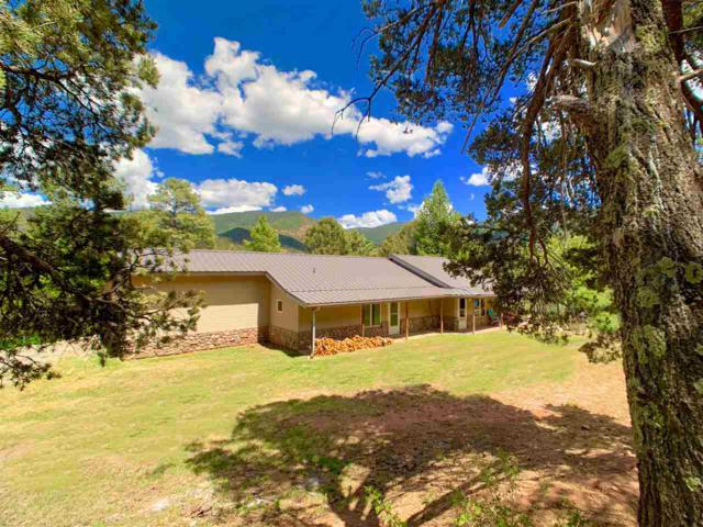 16 Nighthawk, High Rolls Mountain Park, NM 88325 (MLS #160864) :: Assist-2-Sell Buyers and Sellers Preferred Realty